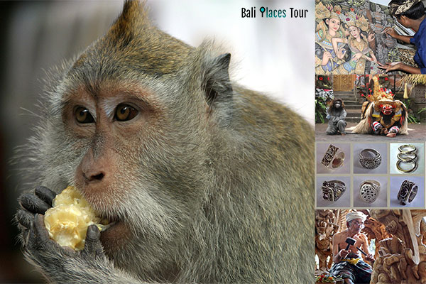 Bali Ubud tour sightseeing package | places to visit in Ubud Bali | things to do in Ubud Bali Indonesia