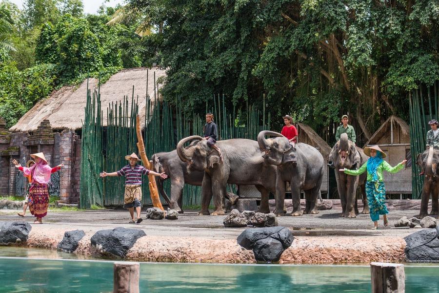 Bali Safari Marine Park Wisata Di Bali Untuk Segala Umur