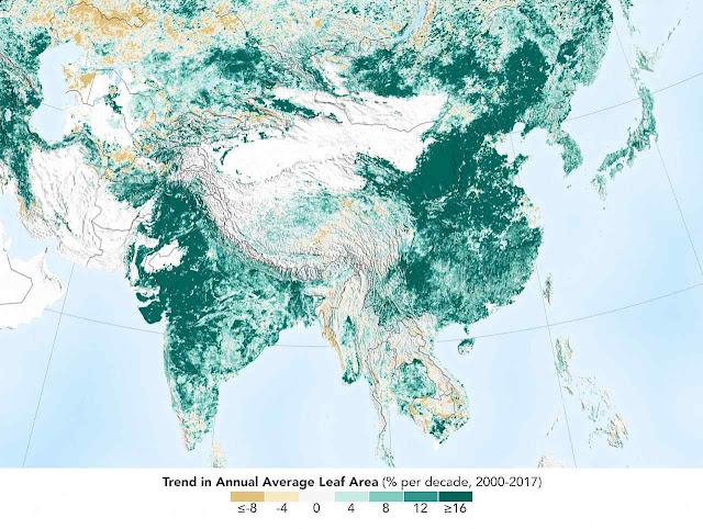 A China e a Índia lideraram o reverdecer do  planeta. Exageros anti-dematamento do ambientalismo não vêm ao caso.