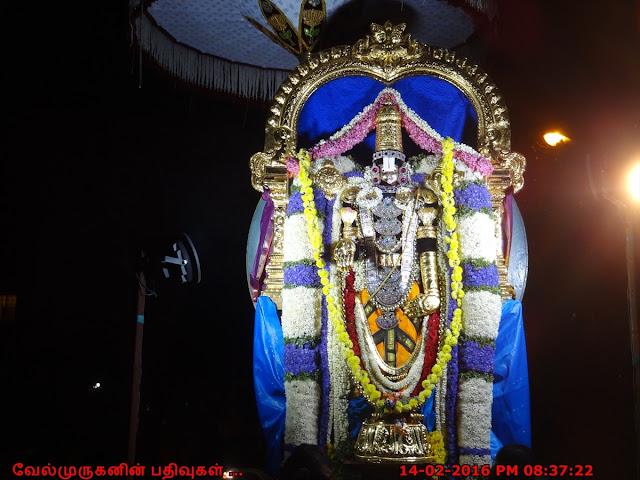 Padmanabha Swamy Brahmothsavam Photos