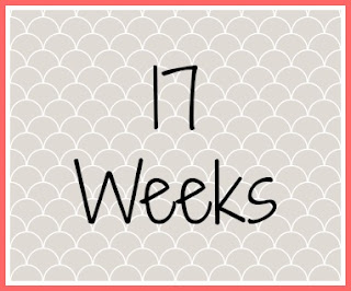 Twin Pregnancy Diary - 17 weeks