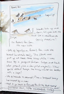 Field journal pages - waders on Baker's Fen (Stillman and Birn beta sketchbook)