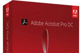 Adobe Acrobat Pro DC 2019.010.20100