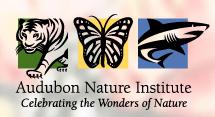 { LOCAL REVIEW } Audubon Insec...