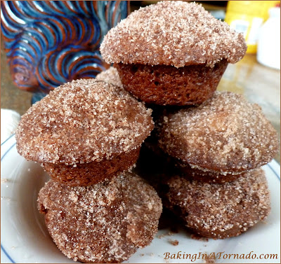 Cinnamon Sugared Dark Chocolate Mini Muffins: two bite dark chocolate muffins coated with cinnamon and sugar almost tasting like a little donut. | Recipe developed by www.BakingInATornado.com | #recipe #muffins