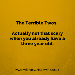 The Terrible Twos: Actually not that scary when you already have a three year old
