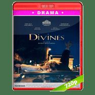 Divines (2016) NF WEBRip 720p Audio Ingles 5.1 Subtitulada