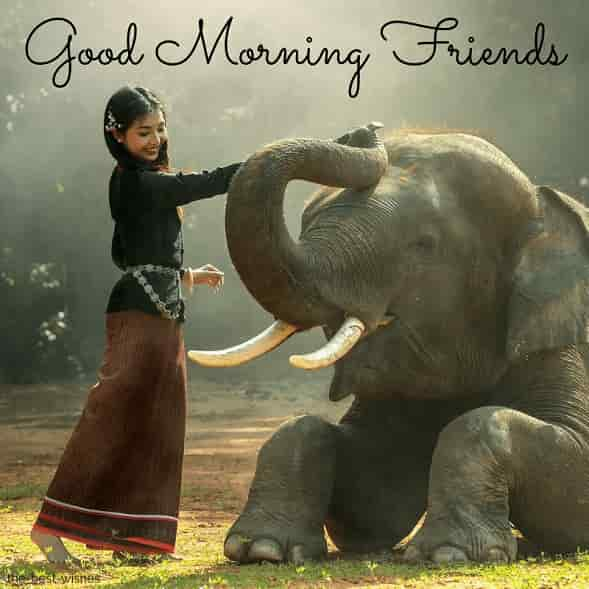 beautiful sceneries with good morning girl and elephant