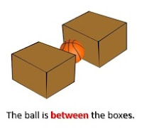 Between the box