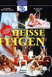 Heisse Feigen 1978 Enrico Calvi Watch Online