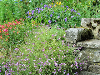 Flowers & Stone Bench