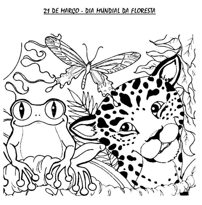 Dia Da Floresta Desenhos E Atividades Para Colorir Imprimir Vi
