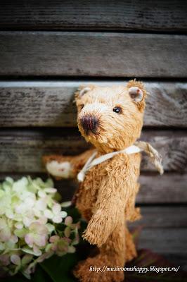 Teddy-bear-Homa, мишки тедди, мишутка