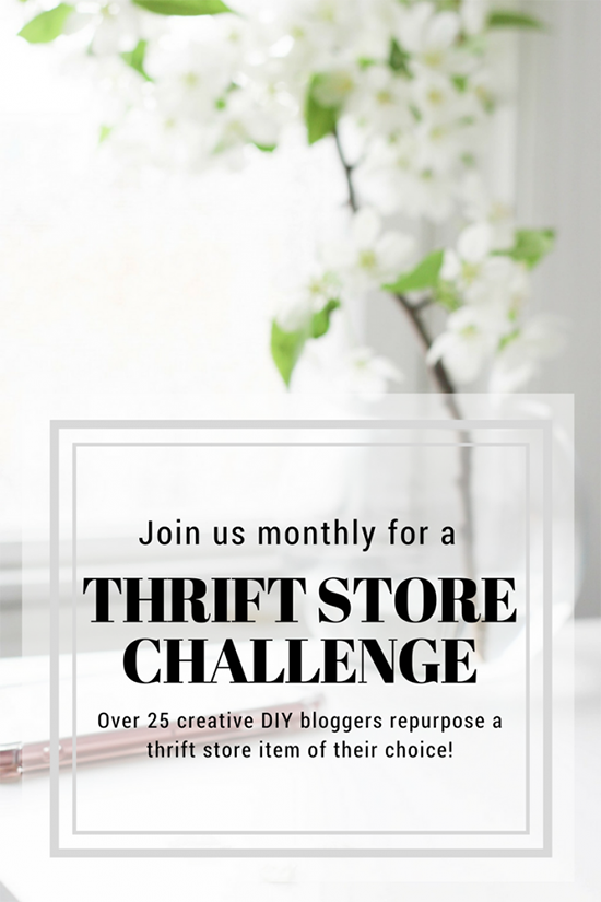 monthly thrift store challenge