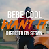 Video | Bebe Cool – Want It | Mp4 Download