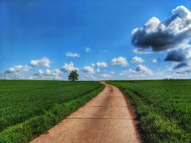 Blue sky, green field landscape