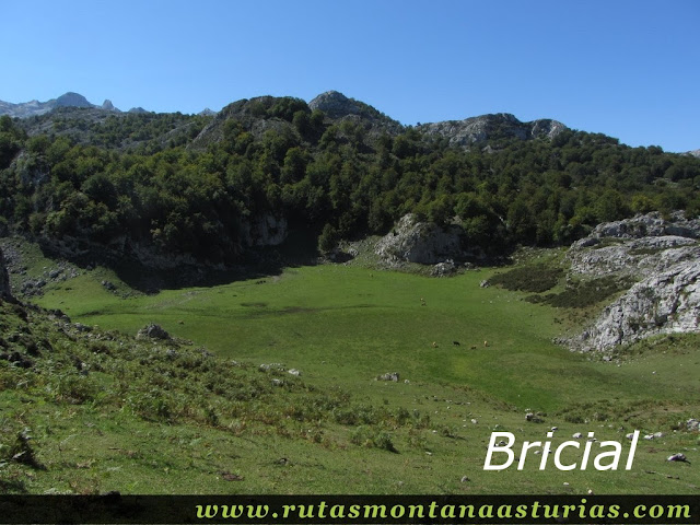 Ruta Lagos de Covadonga PR PNPE-2: Bricial