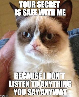 Mengobrol dan berbincang dengan kucing
