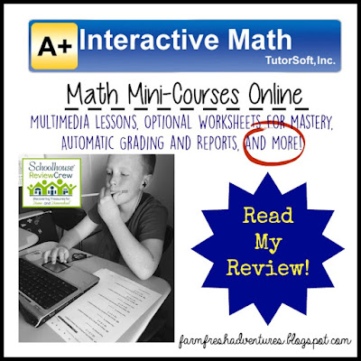 A+ Interactive Math: Math Mini-Courses Product Review