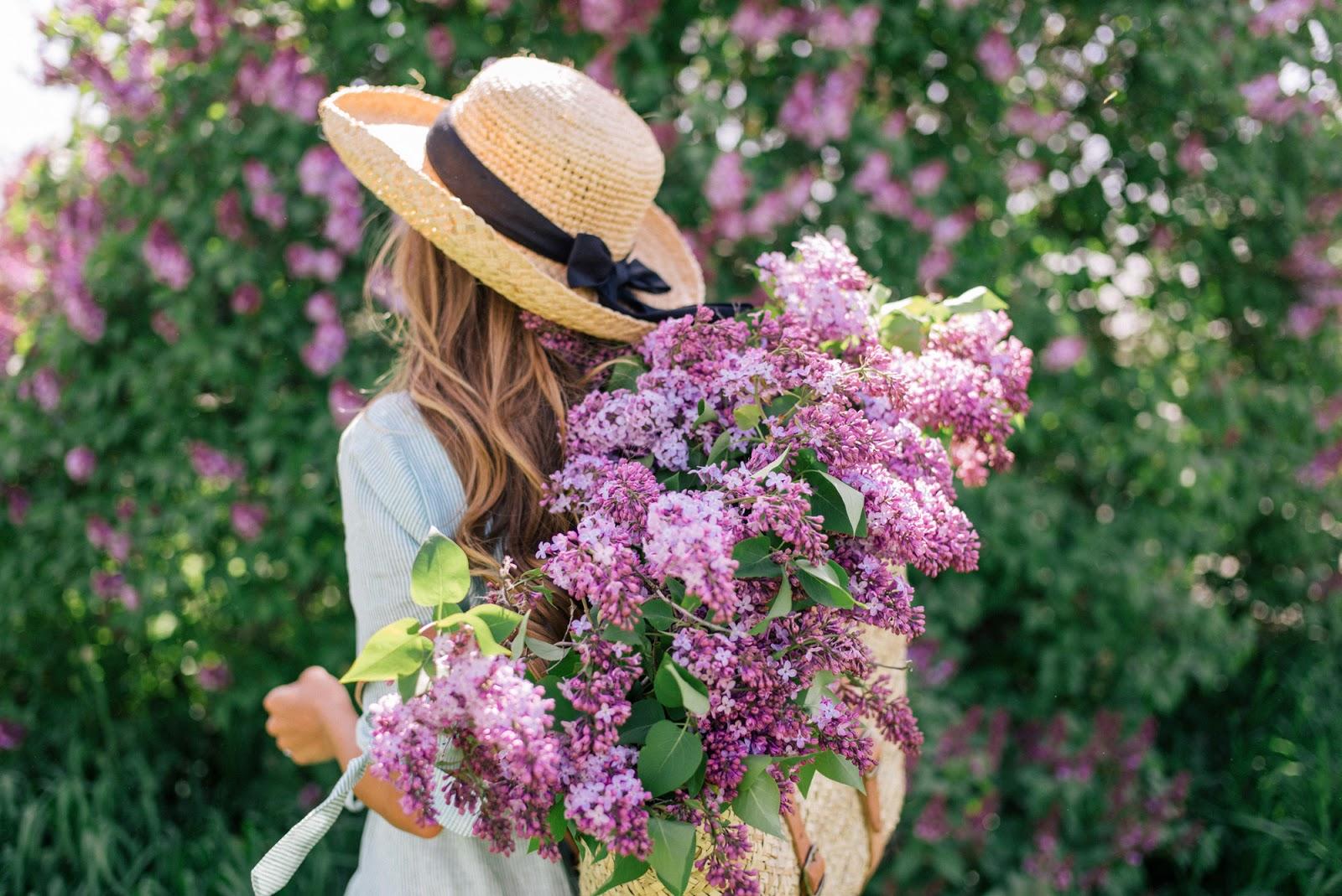 Lilac Season - Gal Meets Glam