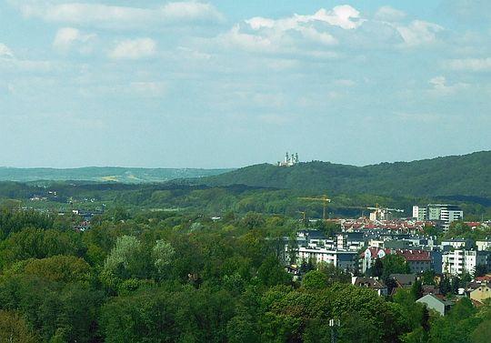 Widok w kierunku Klasztoru Kamedułów na Bielanach.