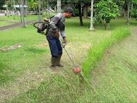 Lowongan Kerja Pemotong Rumput