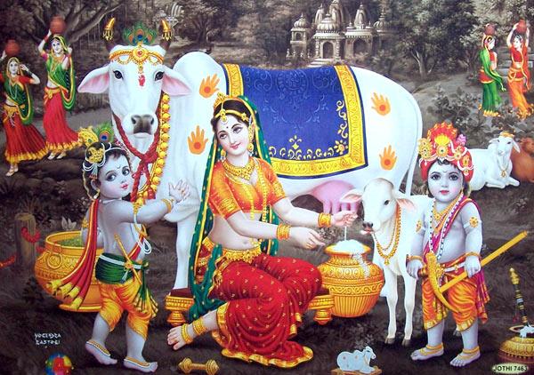 Radha Krishna HD Wallpaper