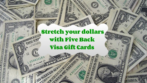 its the holiday season so who wouldnt want to add a little more stretch to their spending dollars i know i sure take advantage of all the offers sales - 15 Visa Gift Card