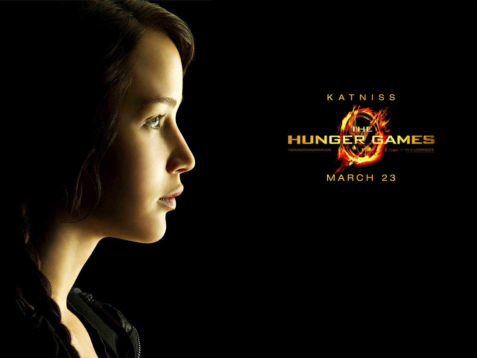 Record Breaking Movie The Hunger Games Posters HD ...