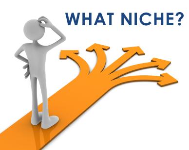 Cara Memilih Niche Yang Tepat Untuk Blog Anda
