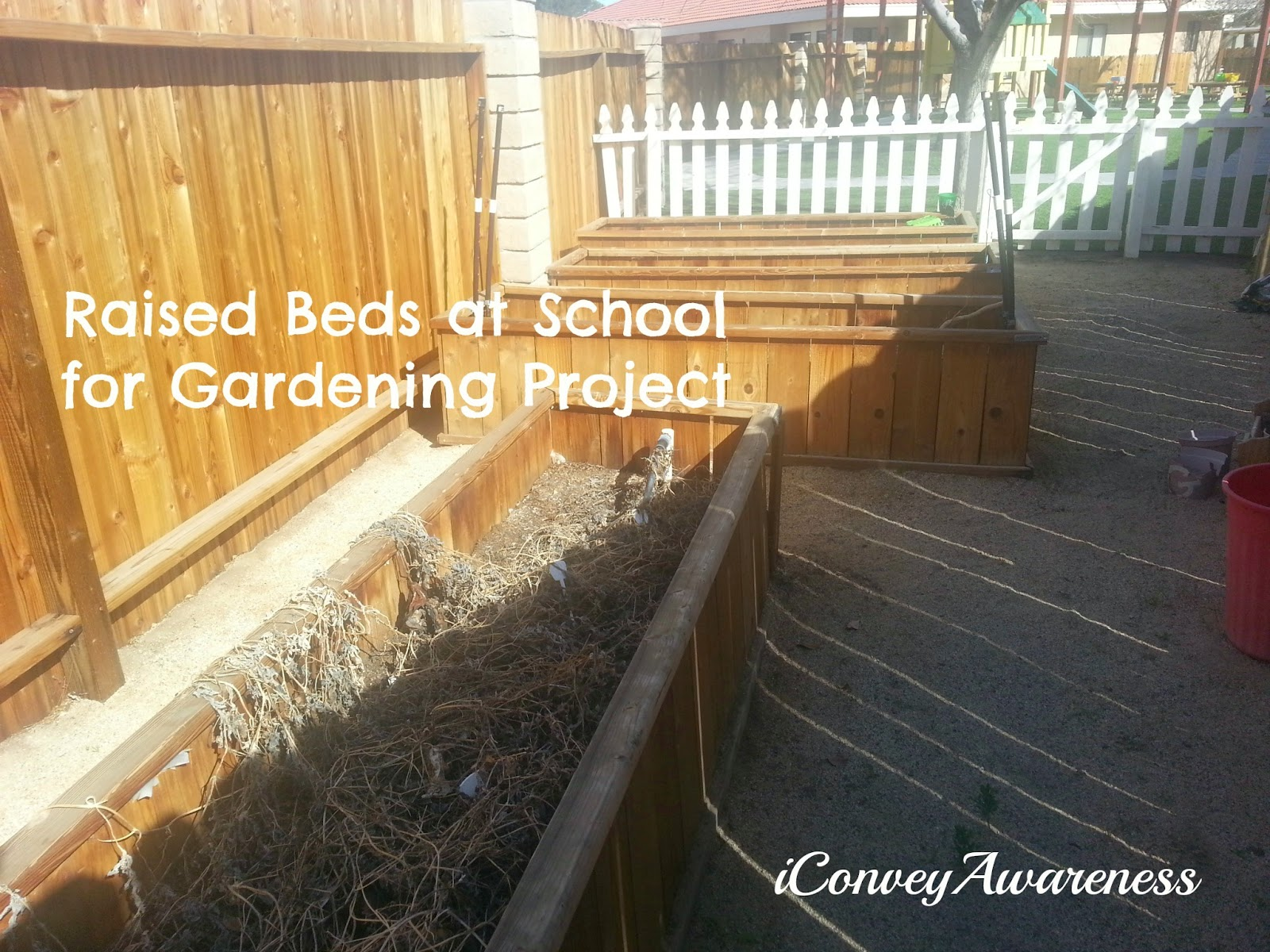 Convey Awareness | Raised Beds - Garden Project at a Montessori