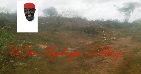 Euphoria as Imo Govt Clears 'Evil Forest' Serving as Home For Kidnappers and Other Criminals (Photo)
