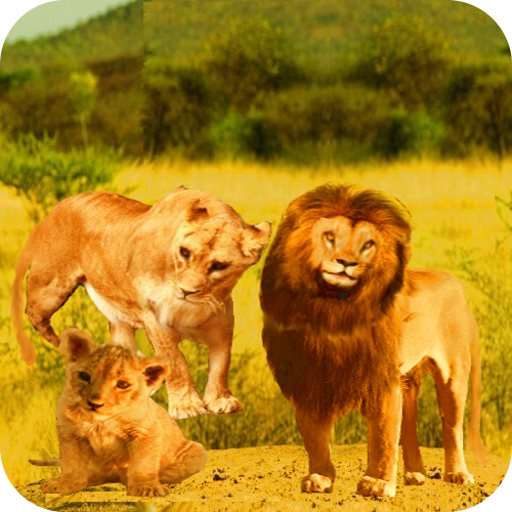 Talking Lion Android App