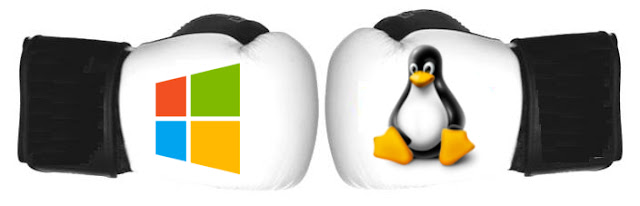 Windows and Linux hosting