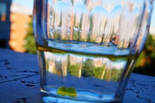 emulsione olio acqua