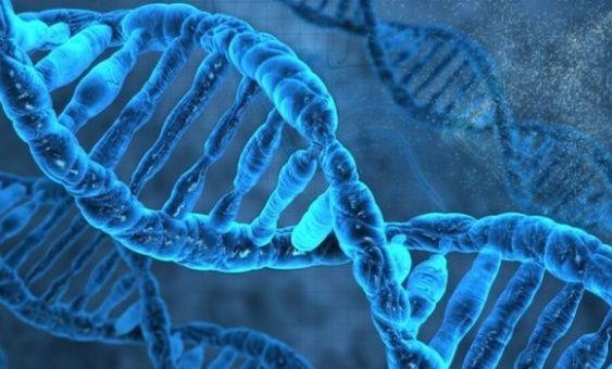 Científicos crean herramientas para reparar fallas genéticas