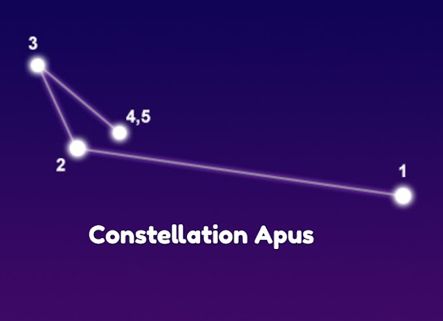 Apus the bird of Paradise Constellation