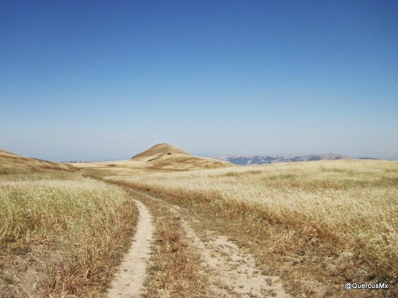 Mission Peak al fondo en el centro - Caminando en Mount Allison