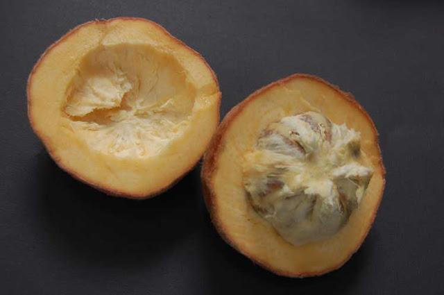 buah mentega