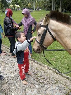 irsyad dan kuda