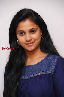 Kannada Actress Kavitha Stills at Srinivasa Kalyana Movie Press Meet  0003.jpg