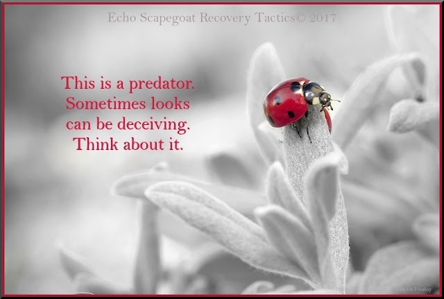 This is a predator. Sometimes looks can be deceiving. Think about it. Echo Scapegoat Recovery Tactics Quote