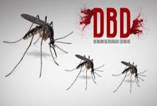 Gejala DB dan Cara Mengobati Demam Berdarah dengan Cepat