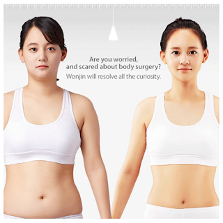 All You Want To Know About Liposuction At Wonjin Plastic Surgery Clinic Seoul Korea