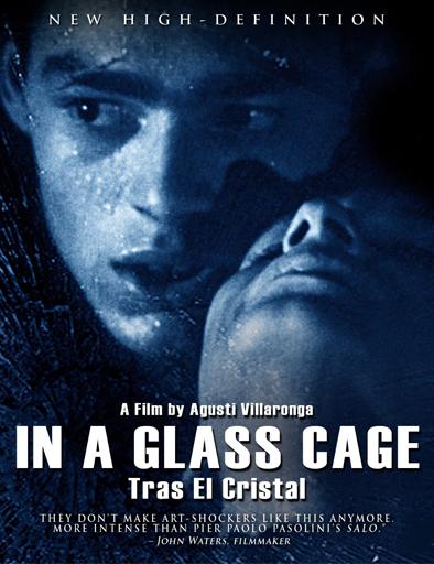 Ver Tras el cristal (1987) Online