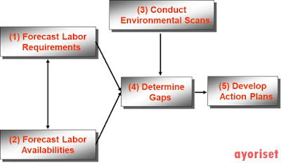 The Basic Elements of Human Resource Planning