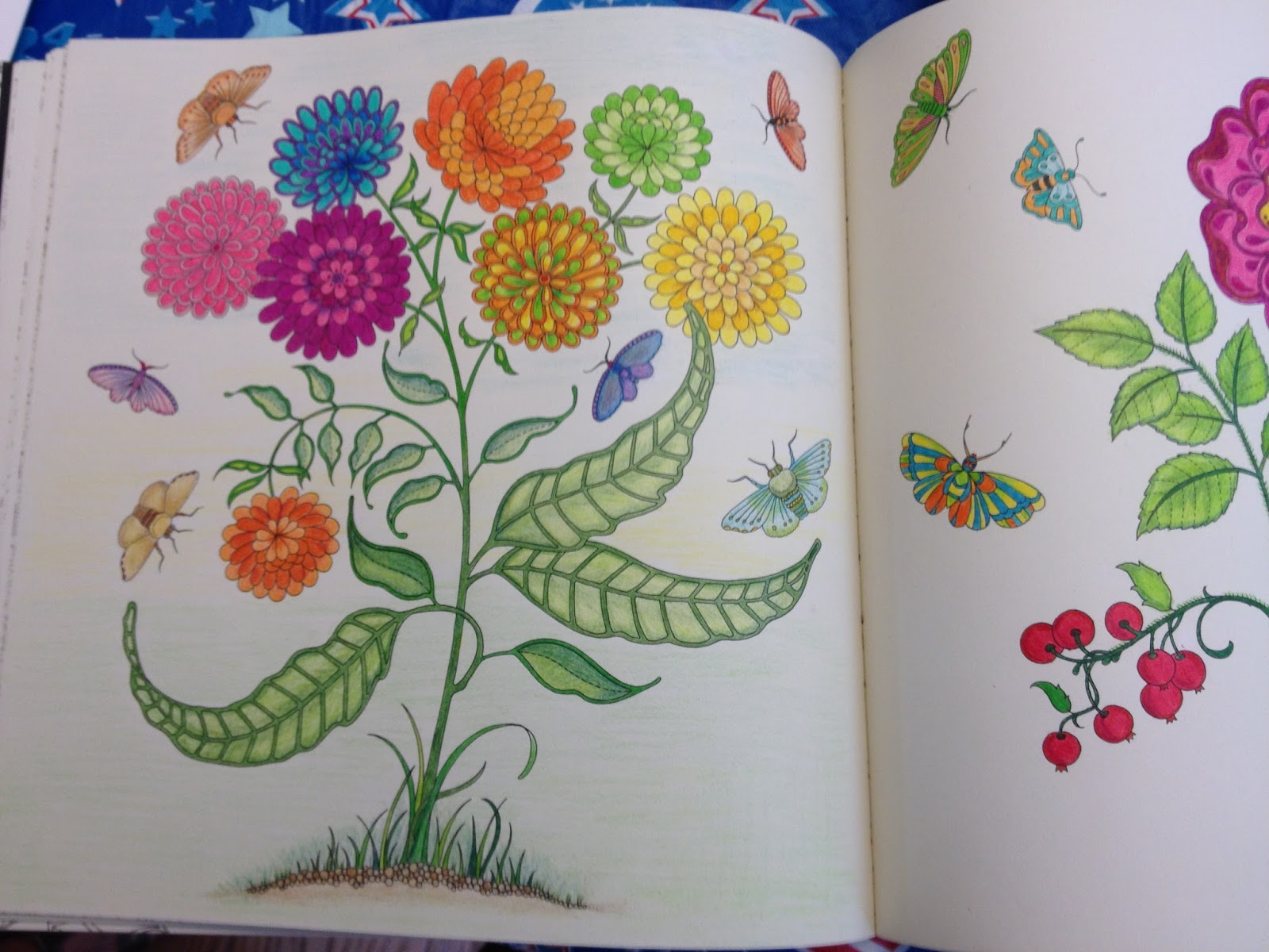 Best Markers For Secret Garden Coloring Book