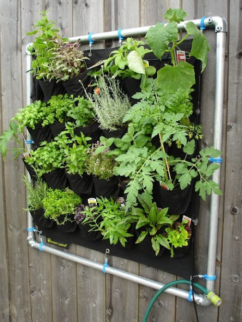 Suspended Vertical Vegetable Garden