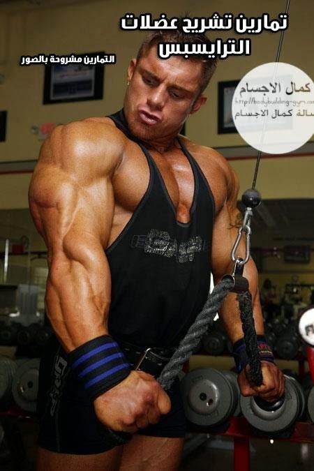 تمارين تحديد عضلات الترايسبس