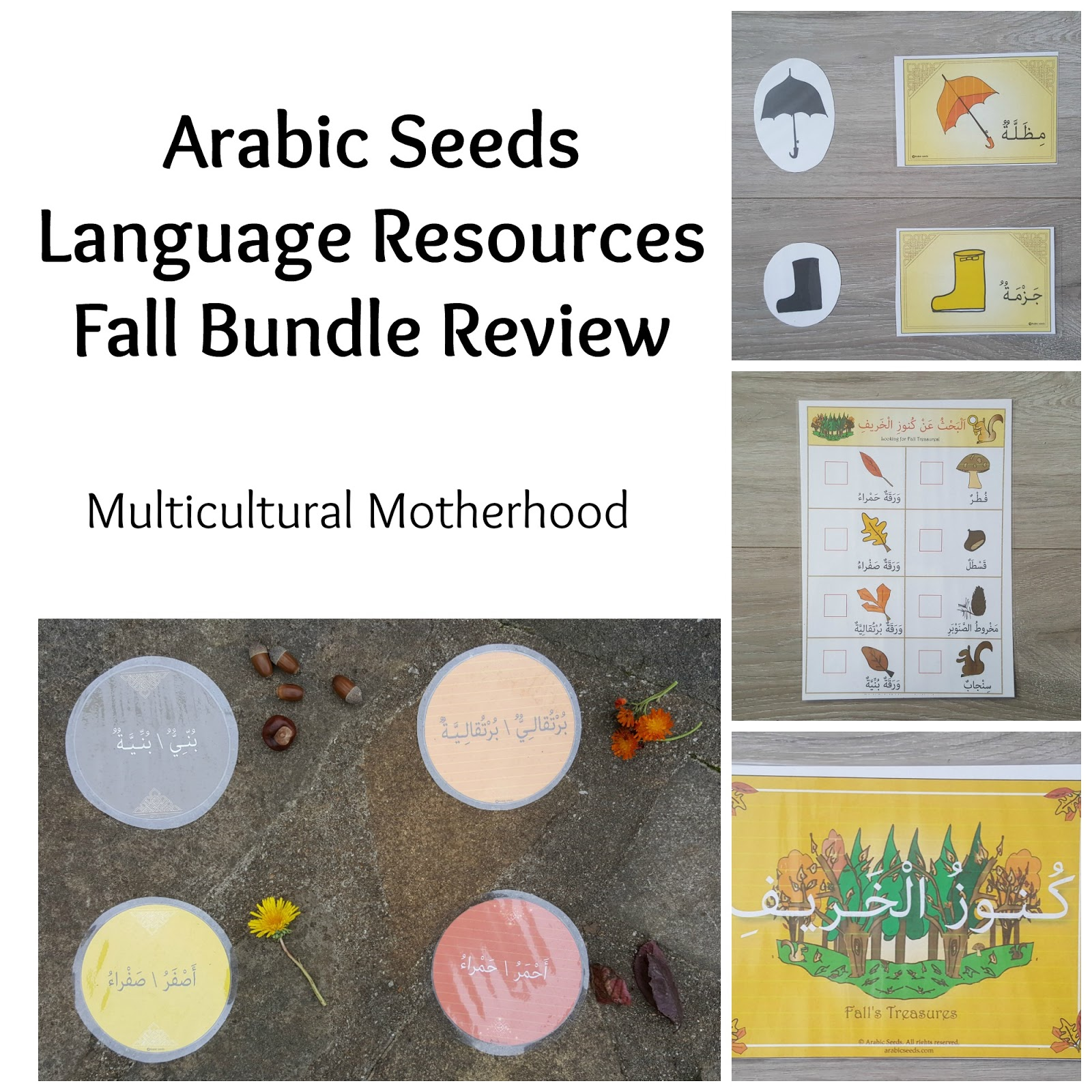 Arabic Seeds Language Resources Fall Bundle Review